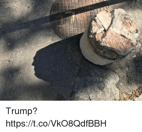 Trump, Faces-In-Things, and Https: Trump? https://t.co/VkO8QdfBBH