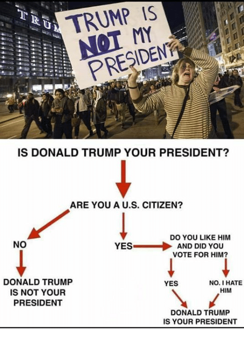 Donald Trump, Memes, and Trump: TRUMP IS  NOT A  PRESIDEN  IS DONALD TRUMP YOUR PRESIDENT?  ARE YOU A U.S. CITIZEN?  NO  DO YOU LIKE HIM  YES-  AND DID YOU  VOTE FOR HIM  DONALD TRUMP  IS NOT YOUR  PRESIDENT  YES  NO. I HATE  HIM  DONALD TRUMP  IS YOUR PRESIDENT