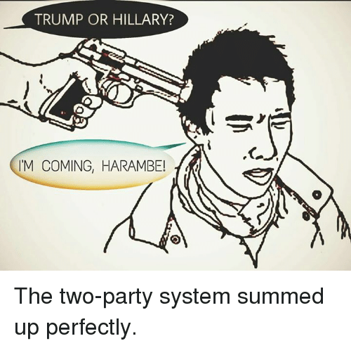 Trump Or Hillary M Coming Harambe The Two Party System Summed Up