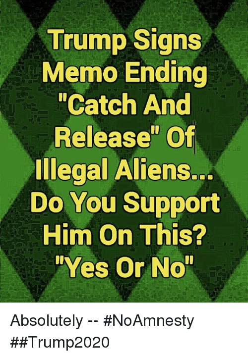 "Memes, Aliens, and Trump: Trump Signs  Memo Ending  ""Catch And  Release"" Of  Illegal Aliens.  Do You Support  Him On This?  Yes Or No Absolutely -- #NoAmnesty ##Trump2020"