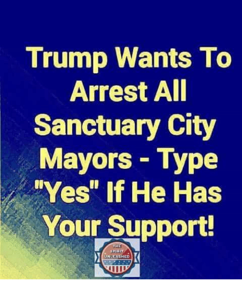"""Memes, Trump, and 🤖: Trump Wants To  Arrest AI  Sanctuary City  Mayors Type  Yes"""" if He Has  Your Support!  UNLEASHED"""
