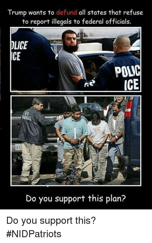 icee: Trump wants to defund all states that refuse  to report illegals to federal officials.  LICE  ICE  GICE  Do you support this plan? Do you support this? #NIDPatriots