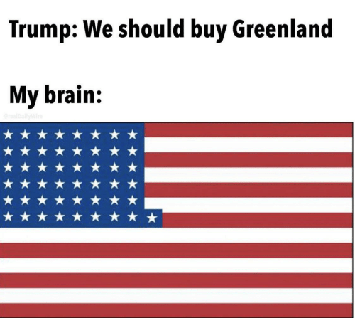 Brain, Trump, and Greenland: Trump: We should buy Greenland  My brain:  realDallyWire