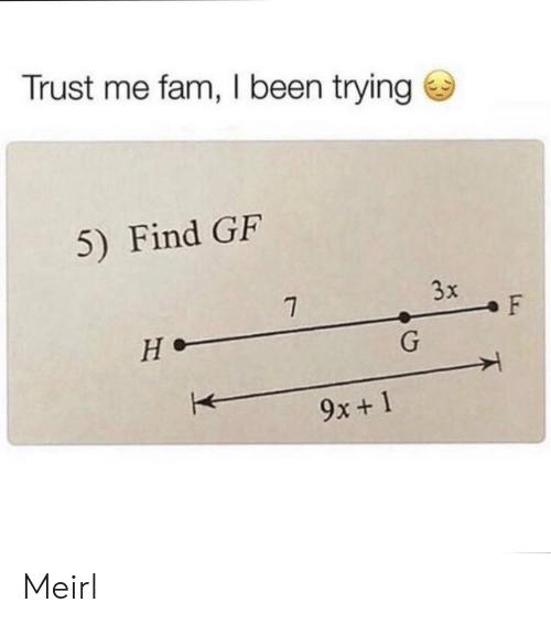 fam: Trust me fam, I been trying  5) Find GF  3x  7  F  не-  G  9x+1 Meirl