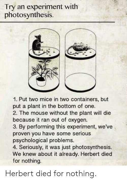 psychological: Try an experiment with  photosynthesis.  1. Put two mice in two containers, but  put a plant in the bottom of one  2. The mouse without the plant will die  because it ran out of oxygen.  3. By performing this experiment, we've  proven you have some serious  psychological problems  4. Seriously, it was just photosynthesis.  We knew about it already. Herbert died  for nothing. Herbert died for nothing.