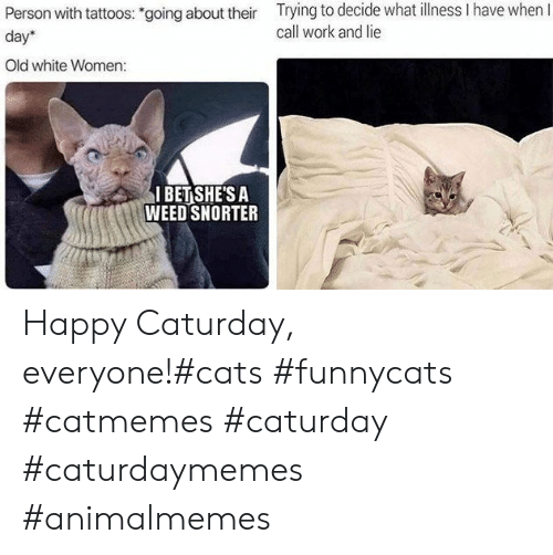 "Caturday: Trying to decide what llness I have when I  call work and lie  Person with tattoos: ""going about their  day  Old white Women:  I BET SHE'S A  WEED SNORTER Happy Caturday, everyone!#cats #funnycats #catmemes #caturday #caturdaymemes #animalmemes"