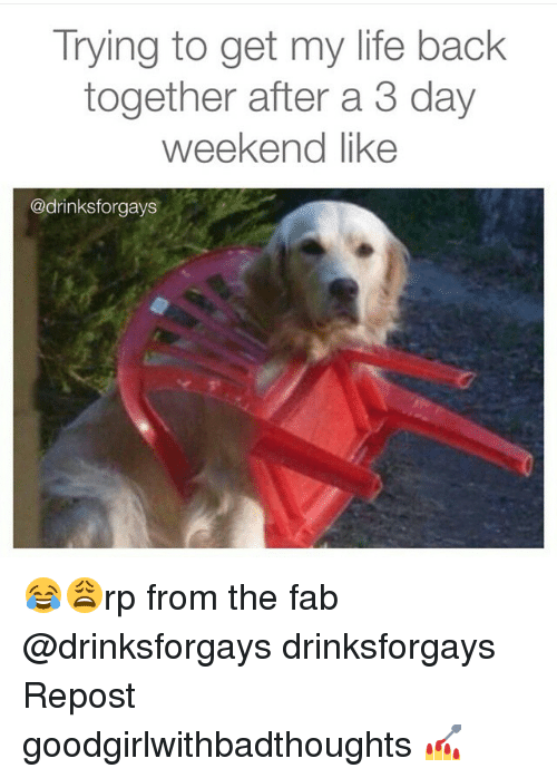 3 Day Weekend: Trying to get my life back  together after a 3 day  weekend like  @drinksforgays 😂😩rp from the fab @drinksforgays drinksforgays Repost goodgirlwithbadthoughts 💅