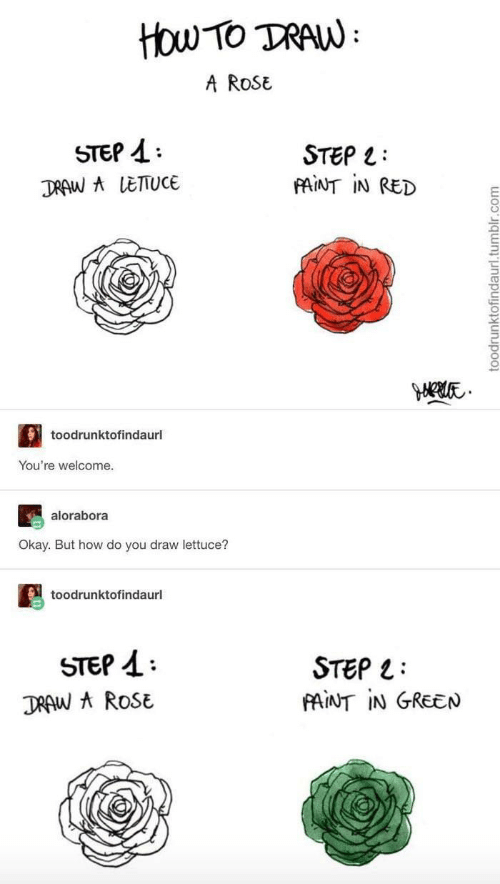 Tumblr, Okay, and Rose: ttou Tο TAN:  A RoSE  STEP  STEP L  FAINT IN RED  DRAW A LETTUCE  toodrunktofindaurl  You're welcome.  alorabora  Okay. But how do you draw lettuce?  toodrunktofindaurl  STEP  STEP  FAINT IN GREEN  DRAW A ROSE  toodrunktofindaurl.tumblr.com