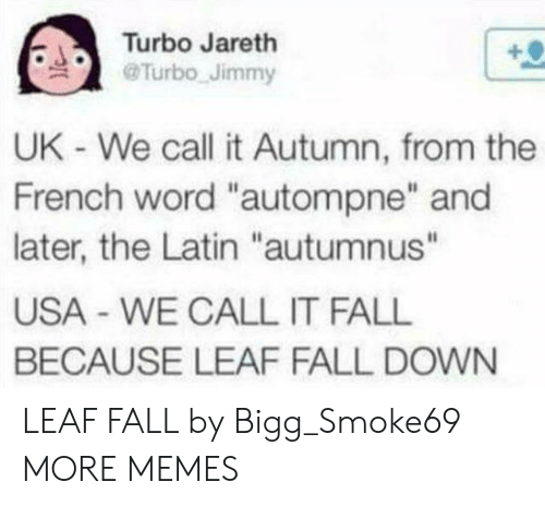 "Dank, Fall, and Memes: Turbo Jareth  Turbo Jimmy  UK - We call it Autumn, from the  French word ""autompne"" and  later, the Latin ""autumnus""  USA WE CALL IT FALL  BECAUSE LEAF FALL DOWN LEAF FALL by Bigg_Smoke69 MORE MEMES"