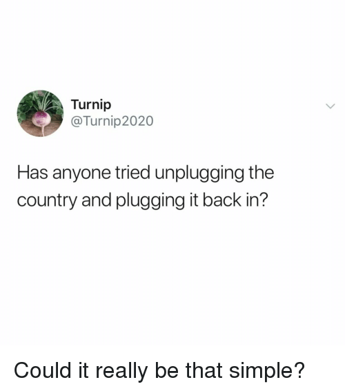 Plugging: Turnip  @Turnip2020  Has anyone tried unplugging the  country and plugging it back in? Could it really be that simple?