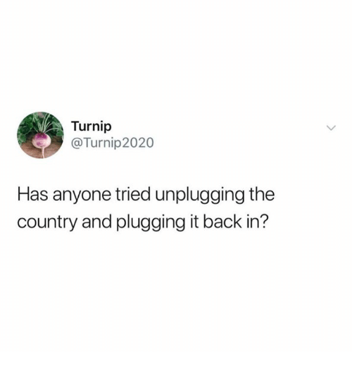 Plugging: Turnip  @Turnip2020  Has anyone tried unplugging the  country and plugging it back in'?