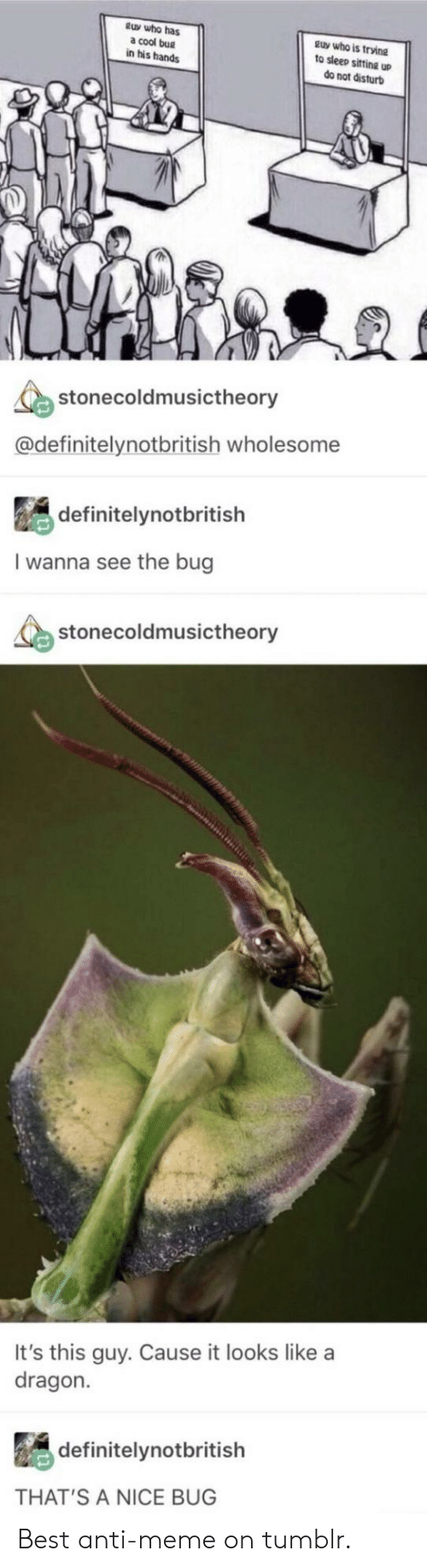 Meme, Tumblr, and Best: tuy who has  a cool bug  in his hands  guy who is trvine  to sleep sifting up  do not disturb  stonecoldmusictheory  @definitelynotbritish wholesome  definitelynotbritish  I wanna see the bug  stonecoldmusictheory  It's this guy. Cause it looks like a  dragon.  definitelynotbritish  THAT'S A NICE BUG Best anti-meme on tumblr.