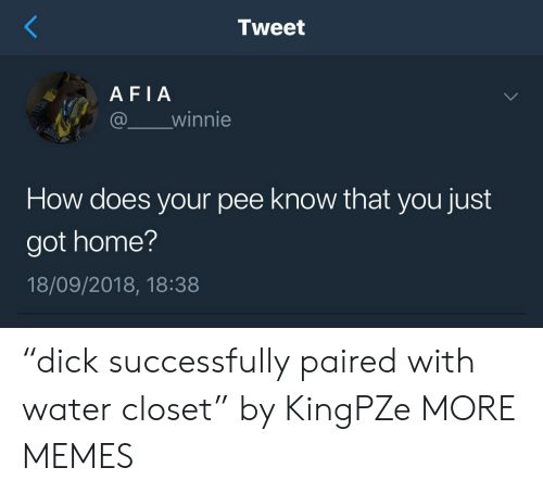 "Dank, Memes, and Target: Tweet  AFIA  @ winnie  How does your pee know that you just  got home?  18/09/2018, 18:38 ""dick successfully paired with water closet"" by KingPZe MORE MEMES"