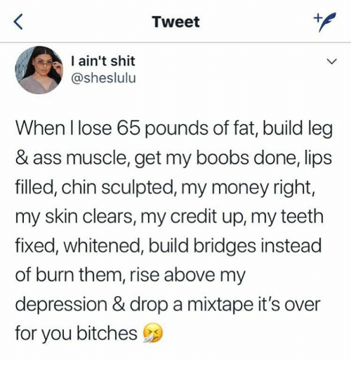 A Mixtape: Tweet  ain't shit  @sheslulu  When llose 65 pounds of fat, build leg  & ass muscle, get my boobs done, lips  filled, chin sculpted, my money right,  my skin clears, my credit up, my teeth  fixed, whitened, build bridges instead  of burn them, rise above my  depression & drop a mixtape it's over  for you bitches