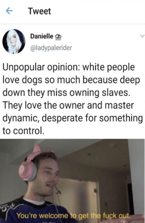 Unpopular: Tweet  Danielle  @ladypalerider  Unpopular opinion: white people  love dogs so much because deep  down they miss owning slaves.  They love the owner and master  dynamic, desperate for something  to control  You're welcome to get the fuck out.