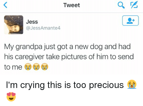Crying, Dogs, and Precious: Tweet  Jess  Jess Amante4  My grandpa just got a new dog and had  his caregiver take pictures of him to send  to me I'm crying this is too precious 😭😍
