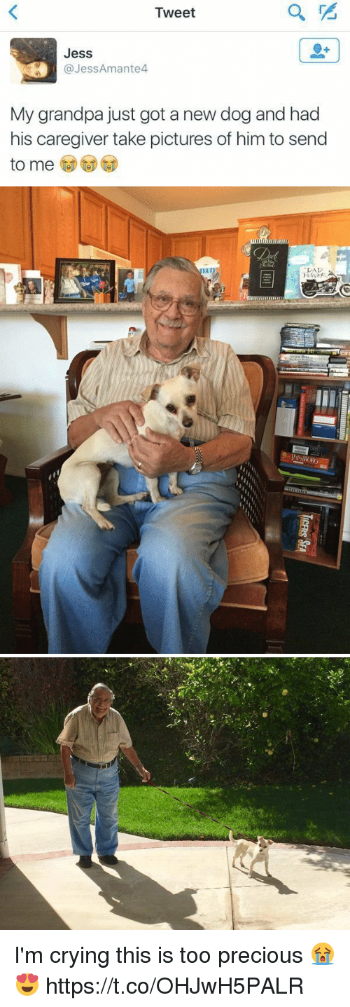 Crying, Precious, and Grandpa: Tweet  Jess  @JessAmante4  My grandpa just got a new dog and had  his caregiver take pictures of him to send   PAD I'm crying this is too precious 😭😍 https://t.co/OHJwH5PALR