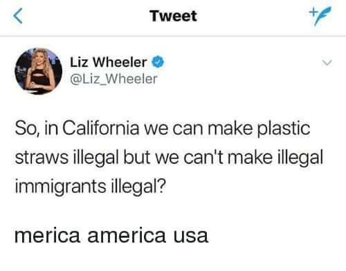 America, Memes, and California: Tweet  Liz Wheeler  @Liz_Wheeler  So, in California we can make plastic  straws illegal but we can't make illegal  immigrants illegal?  merica america usa