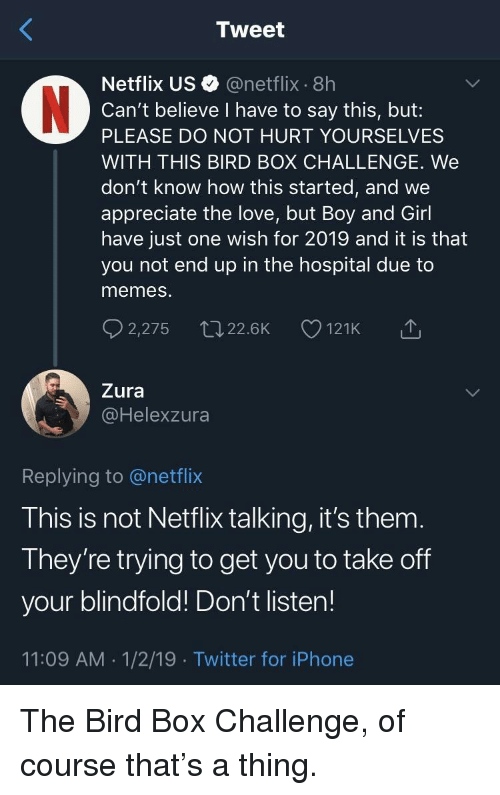 Iphone, Love, and Memes: Tweet  Netflix US@netflix 8h  Can't believe I have to say this, but:  PLEASE DO NOT HURT YOURSELVES  WITH THIS BIRD BOX CHALLENGE. We  don't know how this started, and we  appreciate the love, but Boy and Girl  have just one wish for 2019 and it is that  you not end up in the hospital due to  memes  Zura  @Helexzura  Replying to @netflix  This is not Netflix talking, it's them  They're trying to get you to take off  your blindfold! Don't listen!  11:09 AM 1/2/19 Twitter for iPhone The Bird Box Challenge, of course that's a thing.