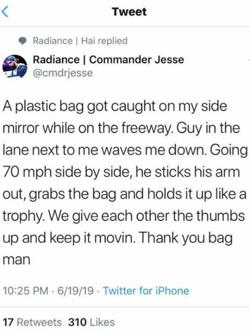 Dank, Iphone, and Twitter: Tweet  Radiance Hai replied  Radiance | Commander Jesse  @cmdrjesse  A plastic bag got caught on my side  mirror while on the freeway. Guy in the  lane next to me waves me down. Going  70 mph side by side, he sticks his arm  out, grabs the bag and holds it up like a  trophy. We give each other the thumbs  up and keep it movin. Thank you bag  man  10:25 PM 6/19/19 Twitter for iPhone  17 Retweets 310 Likes