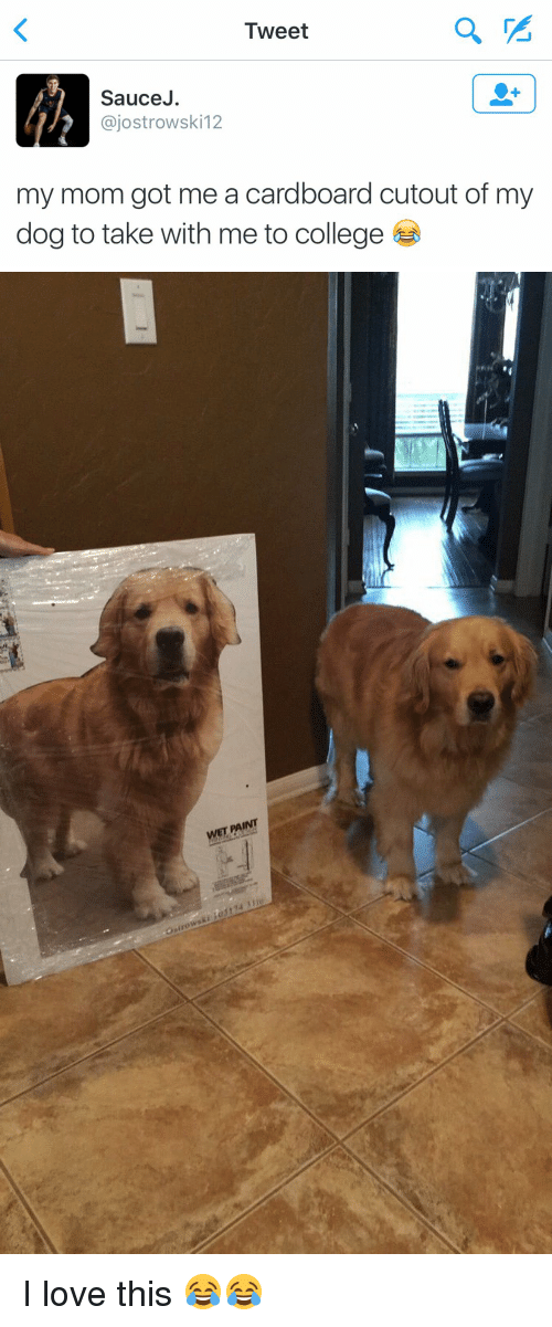 College, Dogs, and Funny: Tweet  Sauce  ajostrowski 12  my mom got me a cardboard cutout of my  dog to take with me to college   WET FAINT I love this 😂😂