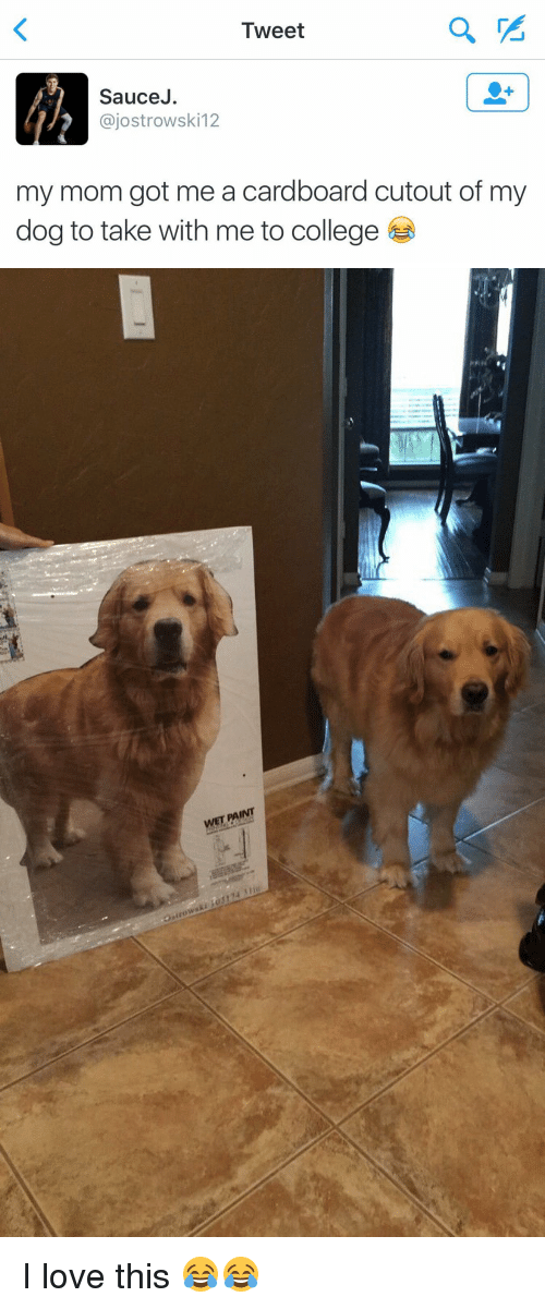 College, Dogs, and Love: Tweet  Sauce  ajostrowski 12  my mom got me a cardboard cutout of my  dog to take with me to college   WET FAINT I love this 😂😂