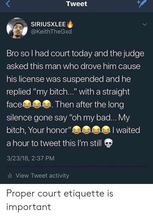 """Bad, Bitch, and Today: Tweet  SIRIUSXLEE  @KeithTheGxd  Bro so l had court today and the judge  asked this man who drove him cause  his license was suspended and he  replied """"my bitch..."""" with a straight  face. Then after the long  silence gone say """"oh my bad... My  bitch, Your honor""""a  a hour to tweet this l'm still  3/23/18, 2:37 PM  ll View Tweet activity  a l waited Proper court etiquette is important"""