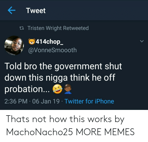 Dank, Iphone, and Memes: Tweet  ta Tristen Wright Retweeted  414chop_  VonneSmoooth  Told bro the government shut  down this nigga think he off  probation...  2:36 PM-06 Jan 19 Twitter for iPhone Thats not how this works by MachoNacho25 MORE MEMES