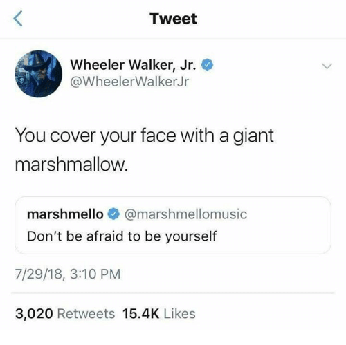 Wheeler: Tweet  Wheeler Walker, Jr.  @WheelerWalkerJr  You cover your face with a giant  marshmallow  marshmello @marshmellomusic  Don't be afraid to be yourself  7/29/18, 3:10 PM  3,020 Retweets 15.4K Likes