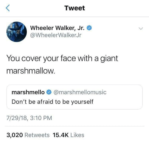Wheeler: Tweet  Wheeler Walker, Jr.  @WheelerWalkerJr  You cover your face with a giant  marshmallow.  marshmello  @marshmellomusic  Don't be afraid to be yourself  7/29/18, 3:10 PM  3,020 Retweets 15.4K Likes