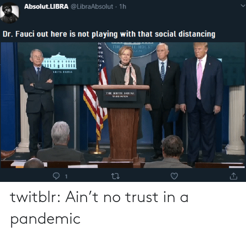 aint: twitblr:  Ain't no trust in a pandemic