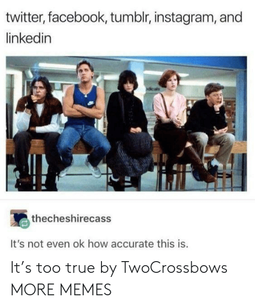 Dank, Facebook, and Instagram: twitter, facebook, tumblr, instagram, and  linkedin  thecheshirecass  It's not even ok how accurate this is. It's too true by TwoCrossbows MORE MEMES