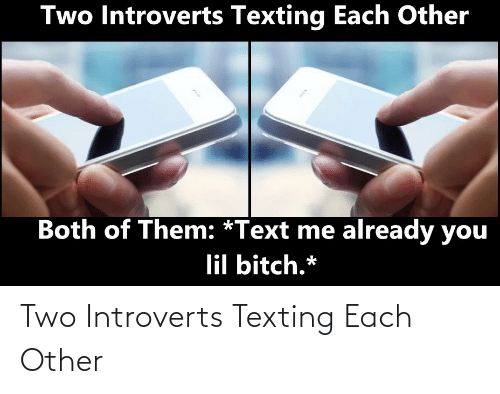 lil bitch: Two Introverts Texting Each Other  Both of Them: *Text me already you  lil bitch.* Two Introverts Texting Each Other