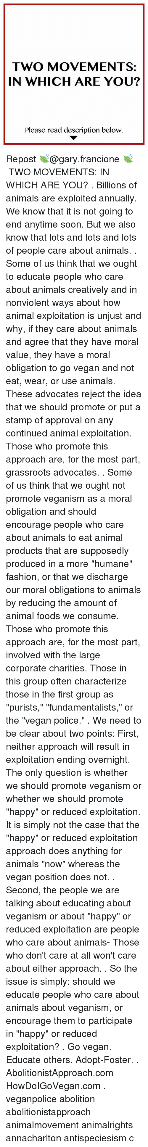 people should continue to use animal