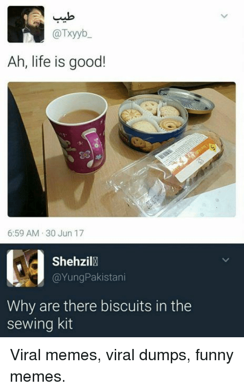 Funny, Life, and Memes: @Txyyb  Ah, life is good!  6:59 AM 30 Jun 17  Shehzil  @YungPakistani  Why are there biscuits in the  sewing kit Viral memes, viral dumps, funny memes.