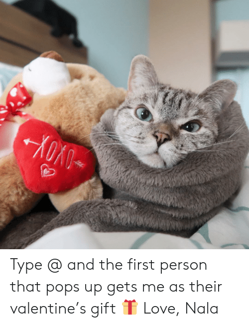 Love, Memes, and 🤖: Type @ and the first person that pops up gets me as their valentine's gift 🎁 Love, Nala