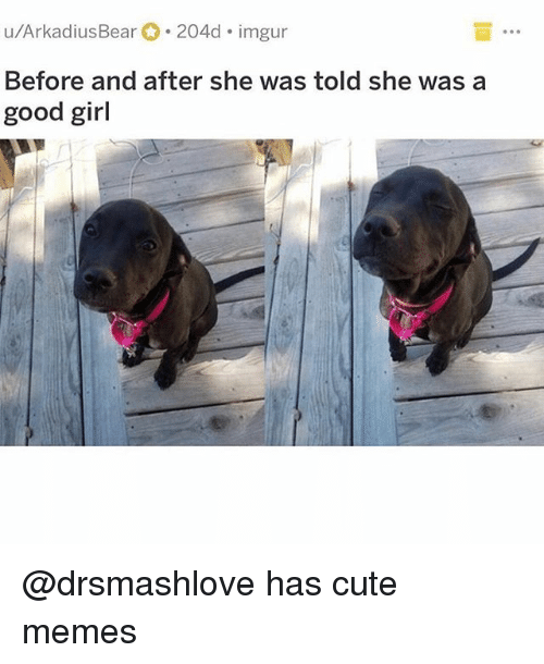 cute memes: u/ArkadiusBear 204d imgur  Before and after she was told she was a  good girl @drsmashlove has cute memes