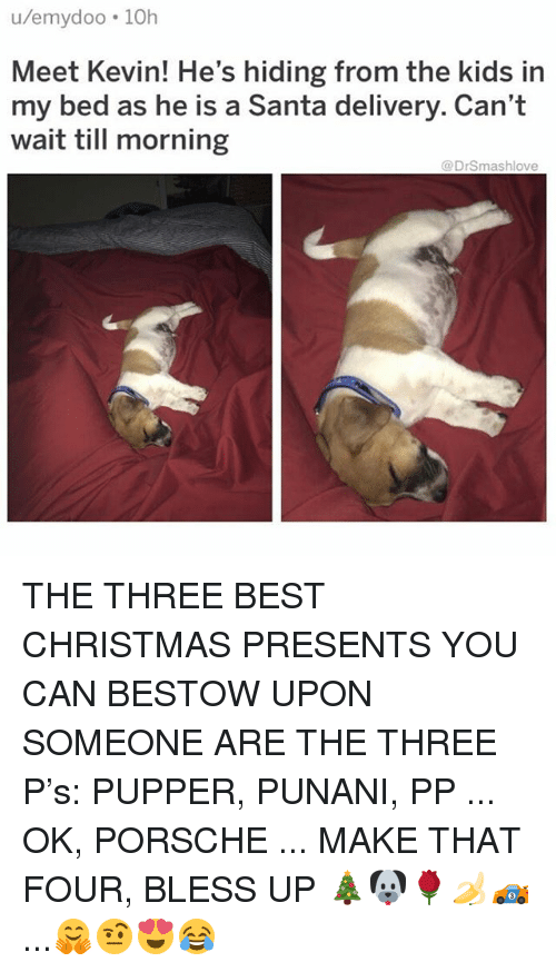 Bless Up, Christmas, and Memes: u/emydoo 10h  Meet Kevin! He's hiding from the kids in  my bed as he is a Santa delivery. Can't  wait till morning  @DrSmashlove THE THREE BEST CHRISTMAS PRESENTS YOU CAN BESTOW UPON SOMEONE ARE THE THREE P's: PUPPER, PUNANI, PP ... OK, PORSCHE ... MAKE THAT FOUR, BLESS UP 🎄🐶🌹🍌🏎...🤗🤨😍😂