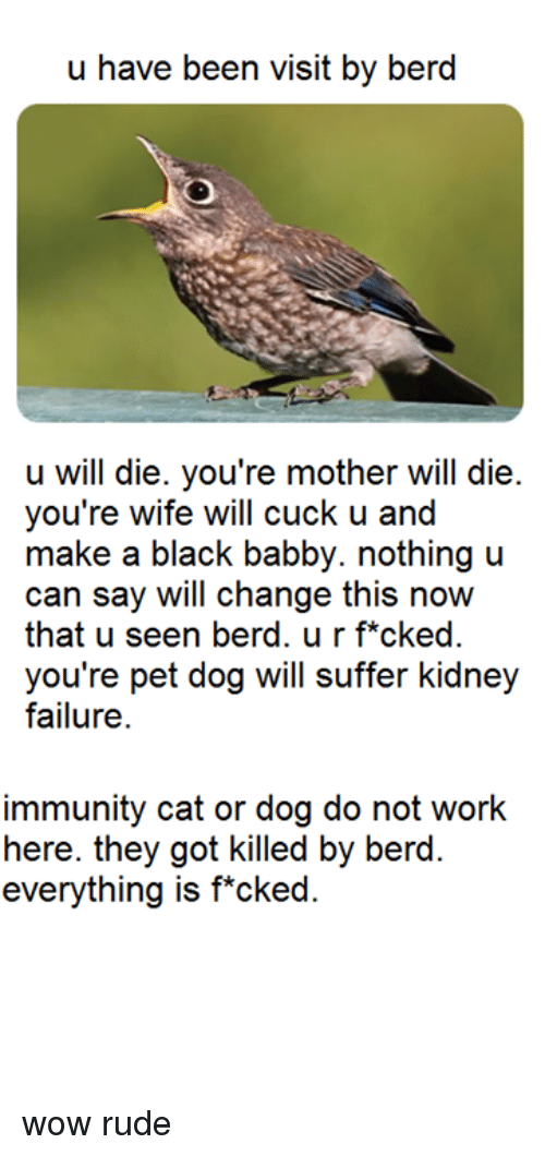 cat-or-dog: u have been visit by berd  u will die. you're mother will die  you're wife will cuck u and  make a black babby. nothing u  can say will change this now  that u seen berd. u r f*cked.  you're pet dog will suffer kidney  failure  immunity cat or dog do not work  here. they got killed by berd  everything is f*cked wow rude