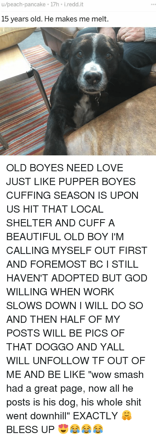 "halfs: u/peach-pancake 17h i.redd.it  15 years old. He makes me melt. OLD BOYES NEED LOVE JUST LIKE PUPPER BOYES CUFFING SEASON IS UPON US HIT THAT LOCAL SHELTER AND CUFF A BEAUTIFUL OLD BOY I'M CALLING MYSELF OUT FIRST AND FOREMOST BC I STILL HAVEN'T ADOPTED BUT GOD WILLING WHEN WORK SLOWS DOWN I WILL DO SO AND THEN HALF OF MY POSTS WILL BE PICS OF THAT DOGGO AND YALL WILL UNFOLLOW TF OUT OF ME AND BE LIKE ""wow smash had a great page, now all he posts is his dog, his whole shit went downhill"" EXACTLY 🤗 BLESS UP 😍😂😂😂"