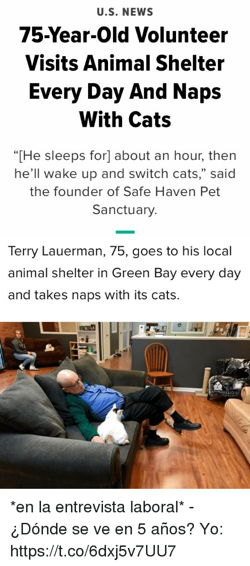 """Cats, News, and Yo: U.S. NEWS  75-Year-Old Volunteer  Visits Animal Shelter  Every Day And Naps  With Cats  """"[He sleeps for] about an hour, then  he'll wake up and switch cats,"""" said  the founder of Safe Haven Pet  Sanctuary.   Terry Lauerman, 75, goes to his local  animal shelter in Green Bay every day  and takes naps with its cats. *en la entrevista laboral*  - ¿Dónde se ve en 5 años?  Yo: https://t.co/6dxj5v7UU7"""