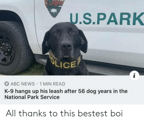 Abc, News, and Abc News: U.S.PARK  OLICE  ABC NEWS 1 MIN READ  K-9 hangs up his leash after 56 dog years in the  National Park Service All thanks to this bestest boi