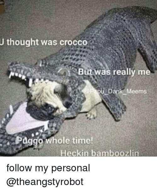 Heckin: U thought was crocco  But was really me  Meems  Paggo ole time!  Heckin bamboozlin follow my personal @theangstyrobot