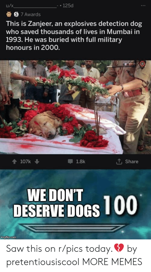 Dank, Dogs, and Memes: u/x  -125d  S 7 Awards  This is Zanjeer, an explosives detection dog  who saved thousands of lives in Mumbai in  1993. He was buried with full military  honours in 2000.  LShare  t107k  1.8k  WE DON'T  DESERVE DOGS 00  imgflip.com Saw this on r/pics today.💔 by pretentiousiscool MORE MEMES