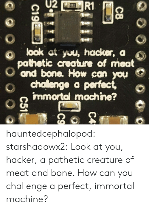 Target, Tumblr, and Blog: U2  R1  look at you, hacker, a  pathetic creature of meat  ond bone. How can you  chalenge a perfect,  immortal mochine?  C8  C4  C19E  C51 hauntedcephalopod:  starshadowx2: Look at you, hacker, a pathetic creature of meat and bone. How can you challenge a perfect, immortal machine?