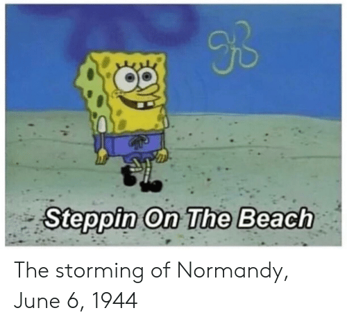 Beach, The Beach, and Normandy: Ub  Steppin On The Beach The storming of Normandy, June 6, 1944