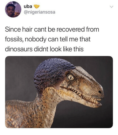 Dinosaurs, Hair, and Can: uba  @nigeriansosa  Since hair cant be recovered from  fossils, nobody can tell me that  dinosaurs didnt look like thiS