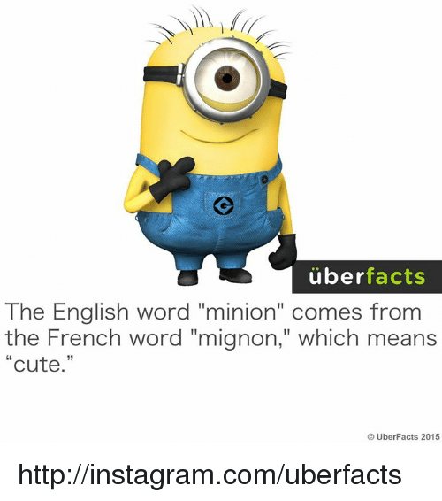 "Uber Facts: uber  facts  The English word ""minion"" comes from  the French word ""mignon,"" which means  Cute  UberFacts 2015 http://instagram.com/uberfacts"
