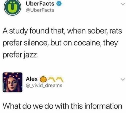 Cocaine, Information, and Sober: UberFacts  @UberFacts  A study found that, when sober, rats  prefer silence, but on cocaine, they  prefer jazz.  Alex  vivid_dreams  What do we do with this information