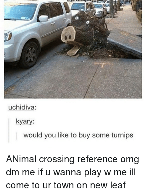 Memes, Omg, and Animal: uchidiva:  kyary:  would you like to buy some turnips ANimal crossing reference omg dm me if u wanna play w me ill come to ur town on new leaf